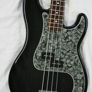 fen usa pbass 94ltd - 1